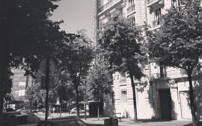 A Writer in Paris